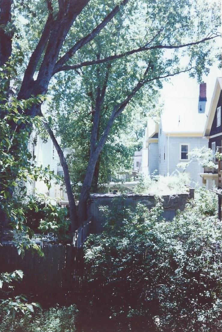 Backyard 306 Summer 1992