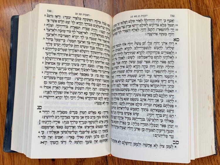 Hebrew Torah open.JPG