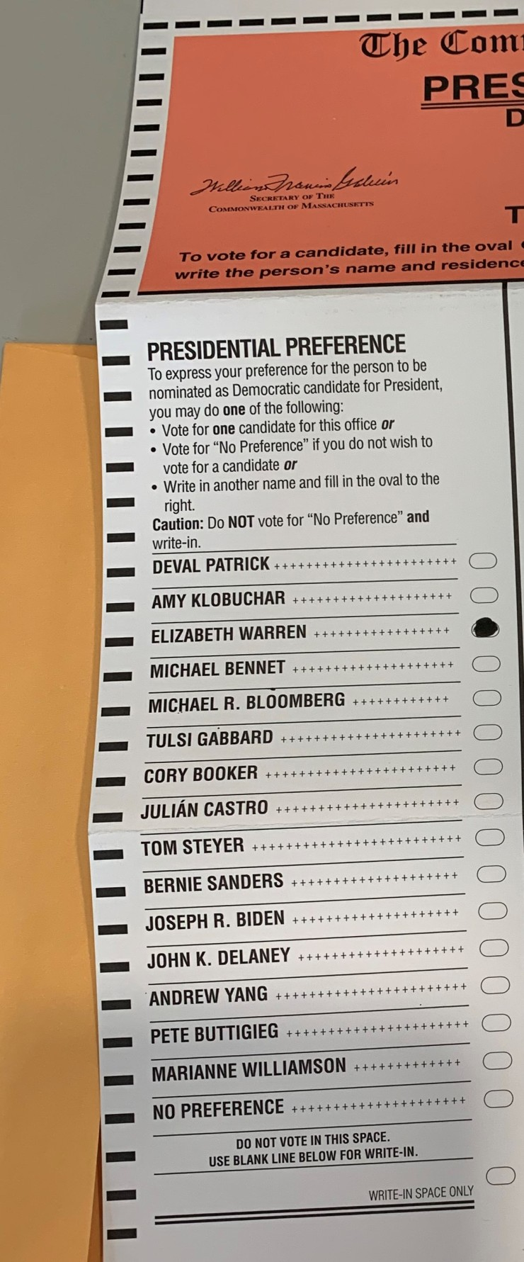 Voting for Warren 2020